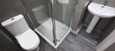 Bathroom Installation Skelton