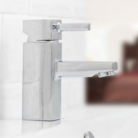 Monobloc Basin Mixer & Waste - Q4 CLEARANCE